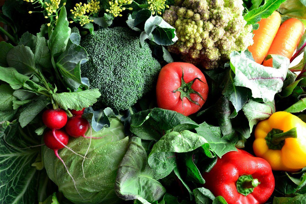 Nutriție integrativă